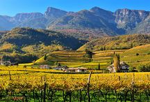 Můj druhý domov Kaltern/Caldaro - Alto Adige / Zde jsem několik let žil a pracoval. Mám zde spoustu přátel.