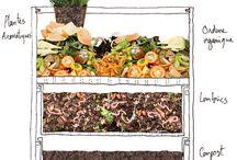 Plants & Composting
