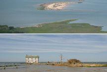 Holland Island & Chesapeake Bay