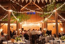 wedding / by cassie dirks