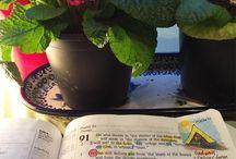 Scripture: Memorizing It!