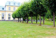 Unsere Trainingsorte / Wir trainieren an den schönsten Orten von Bonn und dem Rhein-Sieg-Kreis.