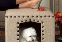 legowiska dla psa