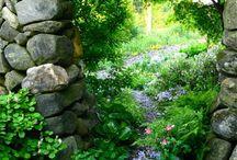 Secret Garden / by Michaela Harlow / The Gardener's Eden