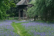 Cottage e cabanas