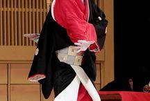 市川海老蔵 歌舞伎 / 海老さま歌舞伎