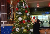 Christmas at Hard Rock Rocksino / It's beginning to look a lot like Christmas! / by Hard Rock Rocksino Northfield Park