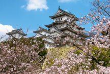 Castle, Palace, Cultural Property