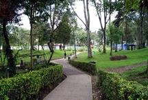 Parques de Bogotá / by Bogotá Plaza Summit Hotel