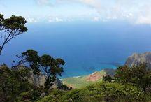 Hawai'i und die 4 Elemente / Hawai'i und Feng Shui. Hier fließen alle 4 Elemente ineinander. Meine Liebe zur Natur und zum Schamanismus hat mich dieses Jahr nach Hawai'i geführt. Ich hatte das große Glück mit Delfinen zu schwimmen und eine Ausbildung für schamanische Heilmethoden zu absolvieren. Neben dem Aloha-Spirit ist Hawai'i ein wunderbares Beispiel, wie hier alle 4 Elemente zusammen agieren - und ich bin sehr dankbar für diese unfassbar wunderschönen Erlebnisse.