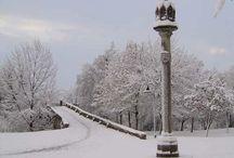 ¡¡ Nieve Fresquita !!