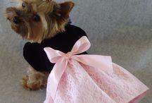 bonitos vestidos para perros pequeños