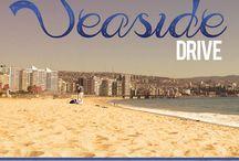 Seaside Drive - Tim Bowman