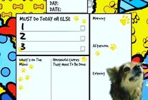 Dog Lover Videos https://scontent.cdninstagram.com/vp/020afc1aad3291db644e58daebbf8baa/5A7A1194/t51.2885-15/s640x640/sh0.08/e35/26867044_221831251725040_7066606650995507200_n.jpg