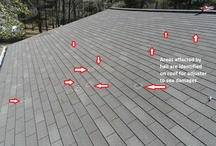 Roofing & Storm Damage Repairs