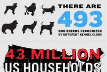 #Infographics: Pets | Animals / infographics related to animals, pets, care of pets, dogs, cats and anything else related