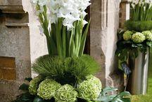 Flower arrangmants