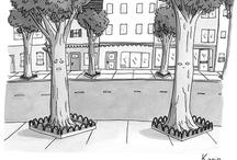 Arborist / Tree stuff