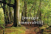 """Renewable Energies and Local Development / Per il sistema alpino, lo sviluppo delle energie rinnovabili può essere un """"mezzo per""""  qualificare il sistema agricolo e della piccola impresa manifatturiera, il sistema energetico territoriale e le produzioni tipiche, per diffondere una cultura del """"green"""" centrata sui temi dei beni pubblici, dei beni collettivi, della partecipazione, del protagonismo sociale."""