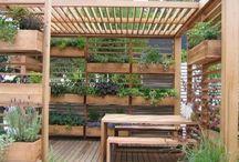 Jardinagem e Botânica.