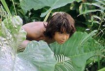 A ~ Jungle Bôôk Adventure