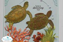 Turtle / Seahorse