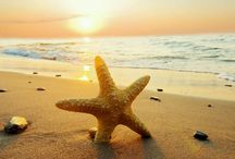 Amazing Seaside / Photos of stunning and beautiful sea side from all over the world