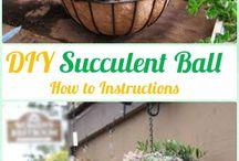 Roundball planter