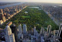 T - New York