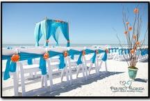 Join our Facebook!  https://www.facebook.com/AAHsf  Beach Wedding Citrus Decor