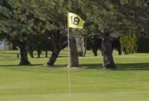 Washington Par 3 and Executive Golf Courses / Washington Par 3 and Executive Golf Courses