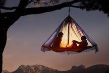 Honeymoon Ideas / by Caron Lewis