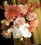Weddings for family/friends / by Maureen Burnham