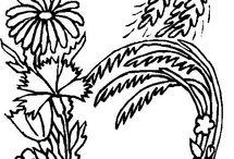 Αλφαβήτα λουλούδια