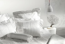 Bedroom / Master Bedroom