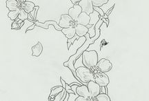 Sketch of the flowers