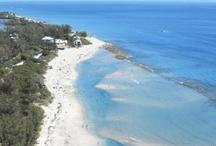 Home / Treasure Coast/Port Saint Lucie/ South Florida / by Sam Jungjohan