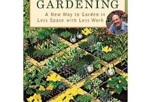 Vege Gardening / Ideas for the vegetable garden