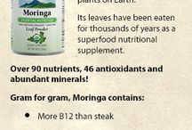 Vegan & Vegetarian Nutritional Supplements For Poochies & Pet Guardians
