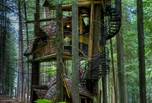 Cabins, Treehouses & Scenary