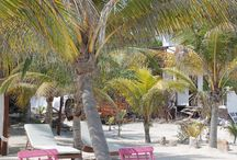 SCD Travel // Isla Holbox