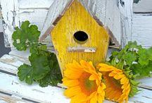 Bird Houses / by Valerie Lewis