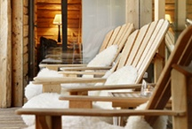 Ski Chalet Ideas / by studioloraine