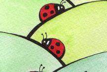 ladybugs/ ladybirds