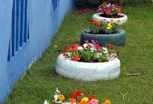 grădina flori