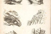 kayalık