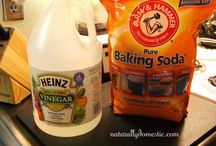 Squeaky clean / by Cheri Howell
