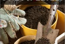Gardening Essentials / by Patty Getz