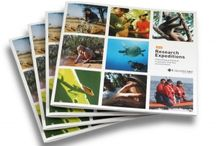 Travel brochure design / Examples