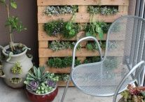 Tricks to mini gardens